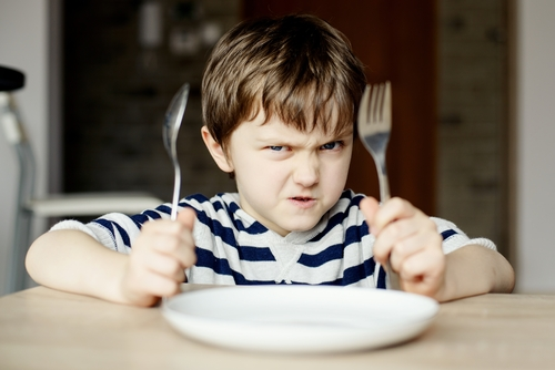 Coping with a Fussy Eater